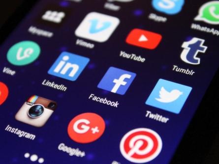 Conheça as pragas virtuais nas redes sociais